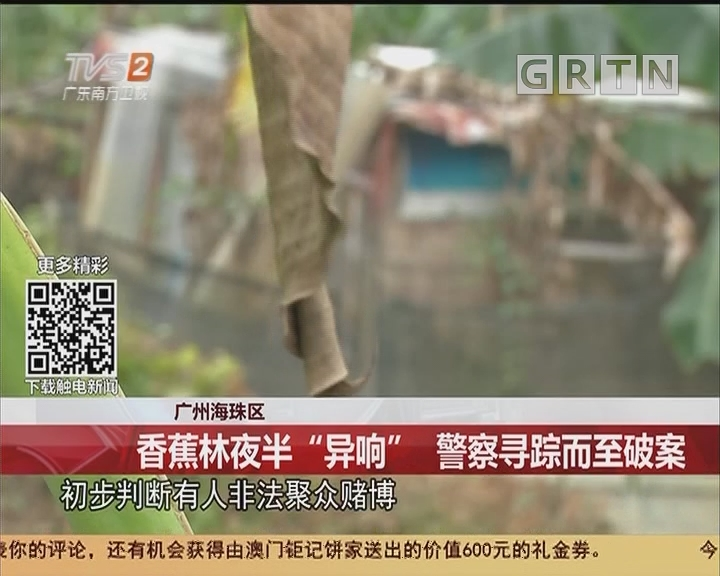 """广州海珠区:香蕉林夜半""""异响"""" 警察寻踪而至破案"""