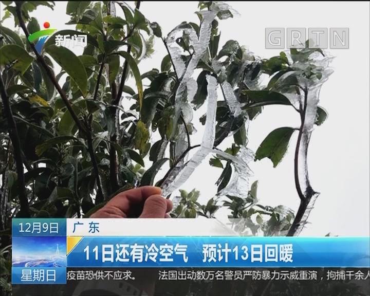 广东:一夜入冬 市民御寒