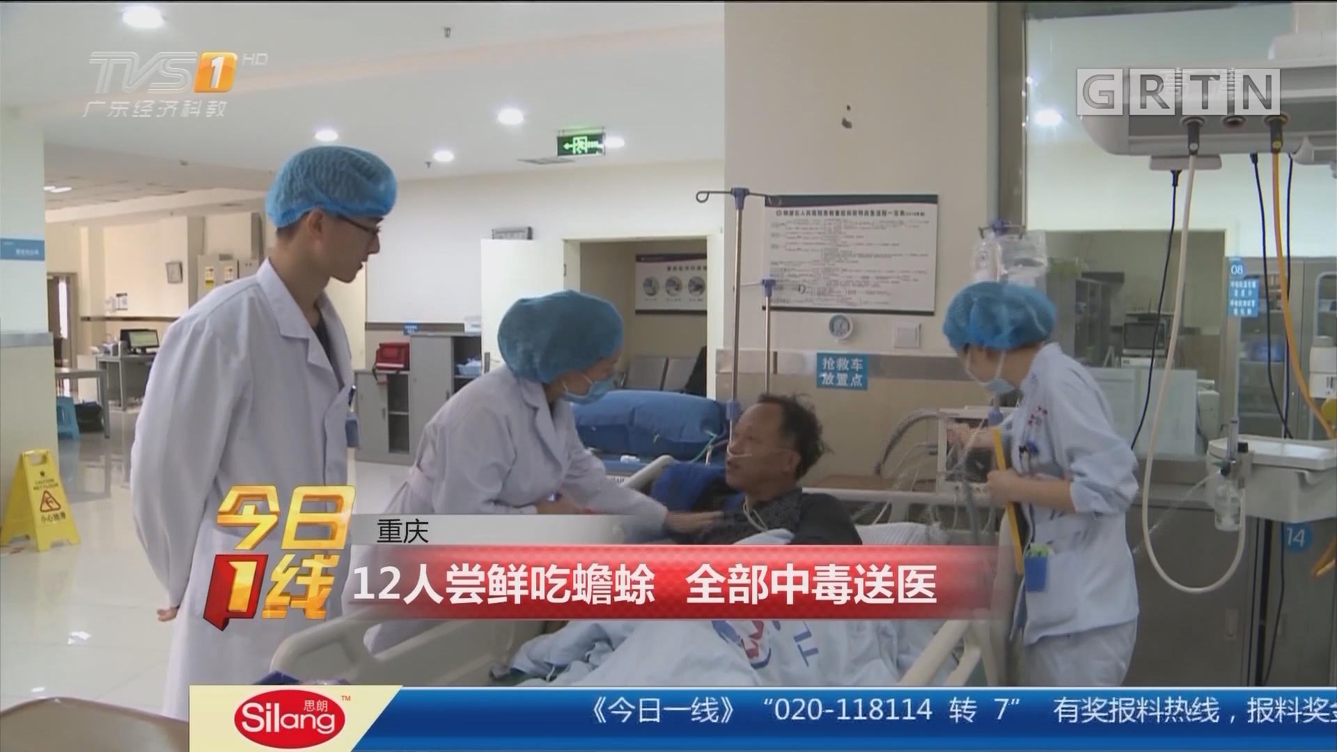重庆:12人尝鲜吃蟾蜍 全部中毒送医