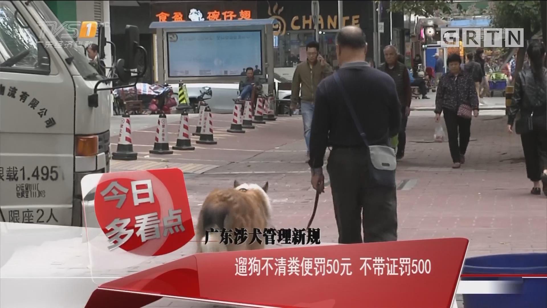广东涉犬管理新规:遛狗不清粪便罚50元 不带证罚500