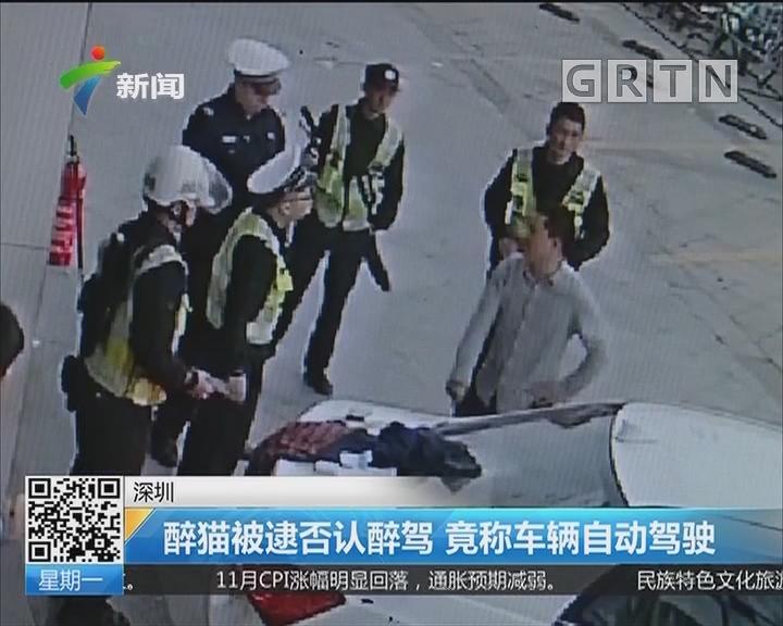 深圳:醉猫被逮否认醉驾 竟称车辆自动驾驶