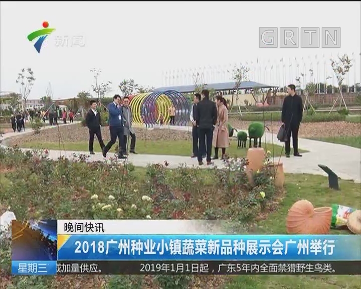 2018广州种业小镇蔬菜新品种展示会广州举行