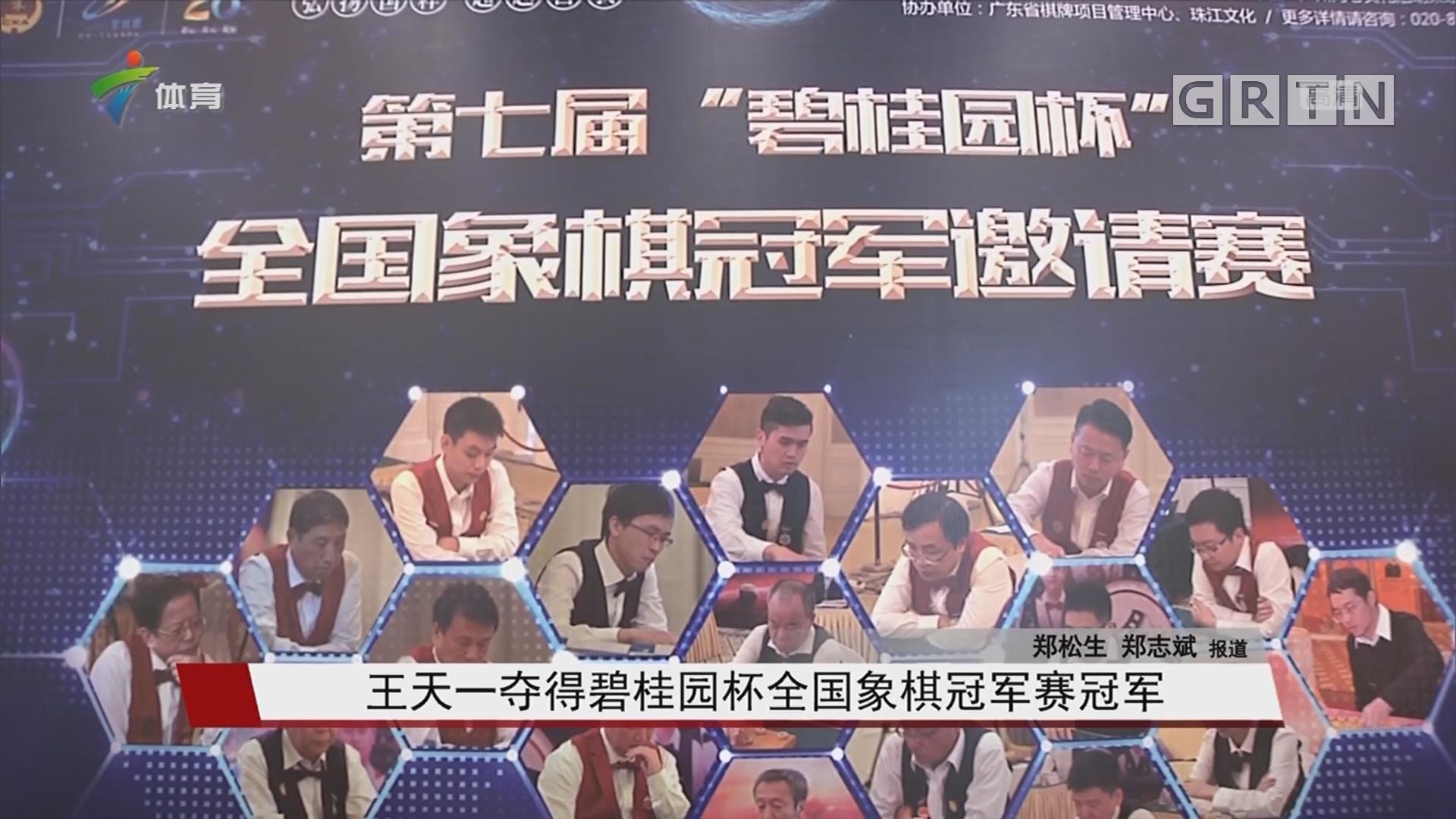 王天一夺得碧桂园杯全国象棋冠军赛冠军