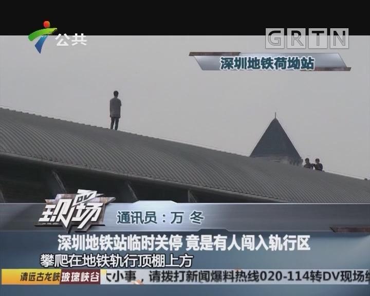 深圳地铁站临时关停 竟是有人闯入轨行区