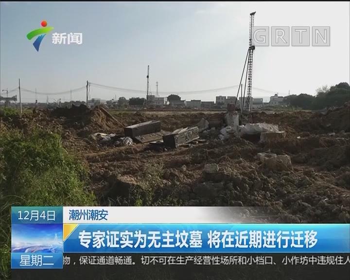 潮州潮安:网传工地挖出百年古墓?专家现场考察