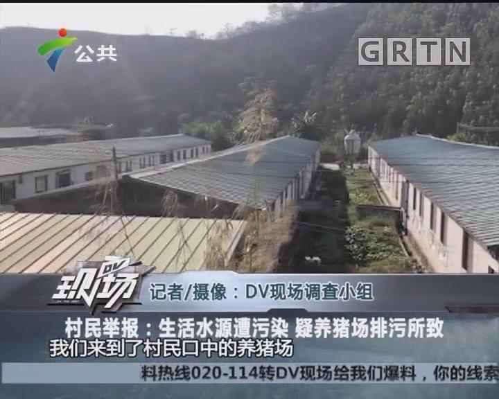 村民举报:生活水源遭污染 疑养猪场排污所致