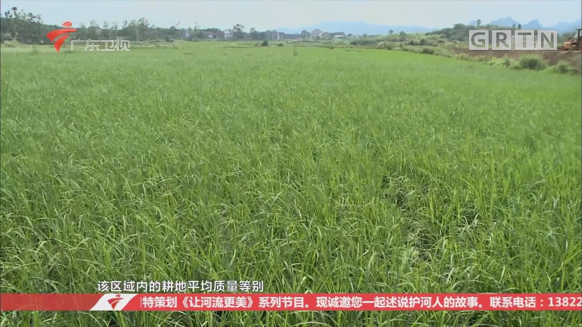 清远:连州市垦造水田 夯实农业发展基础