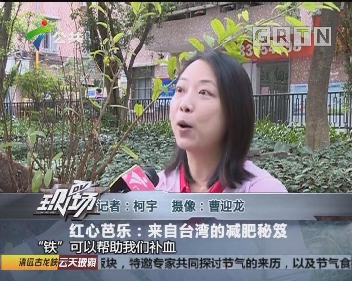 红心芭乐:来自台湾的减肥秘笈