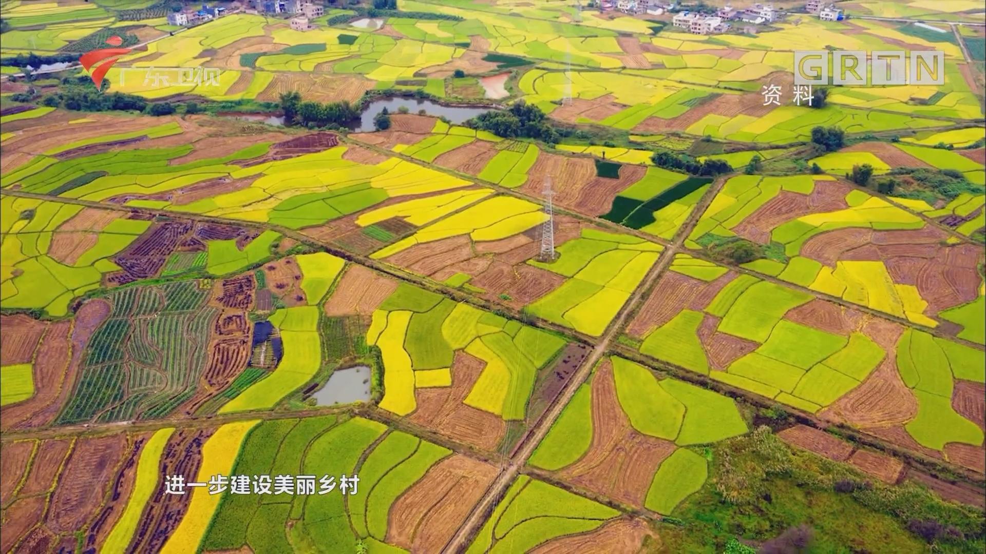 韶关:始兴县促农增收 推进高标准农田建设