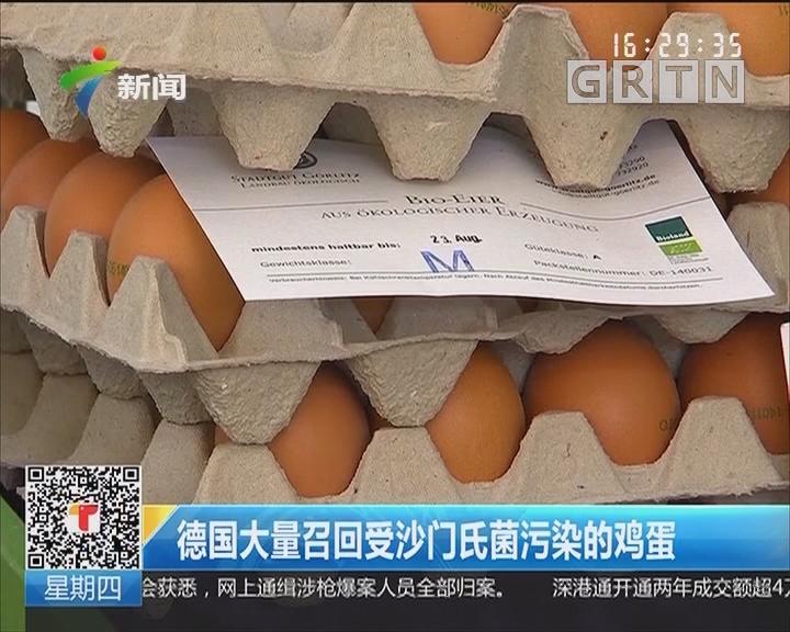 德国大量召回受沙门氏菌污染的鸡蛋