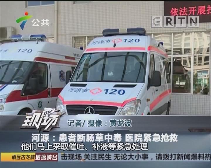 河源:患者断肠草中毒 医院紧急抢救