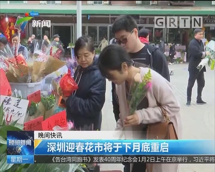 深圳迎春花市将于下月底重启