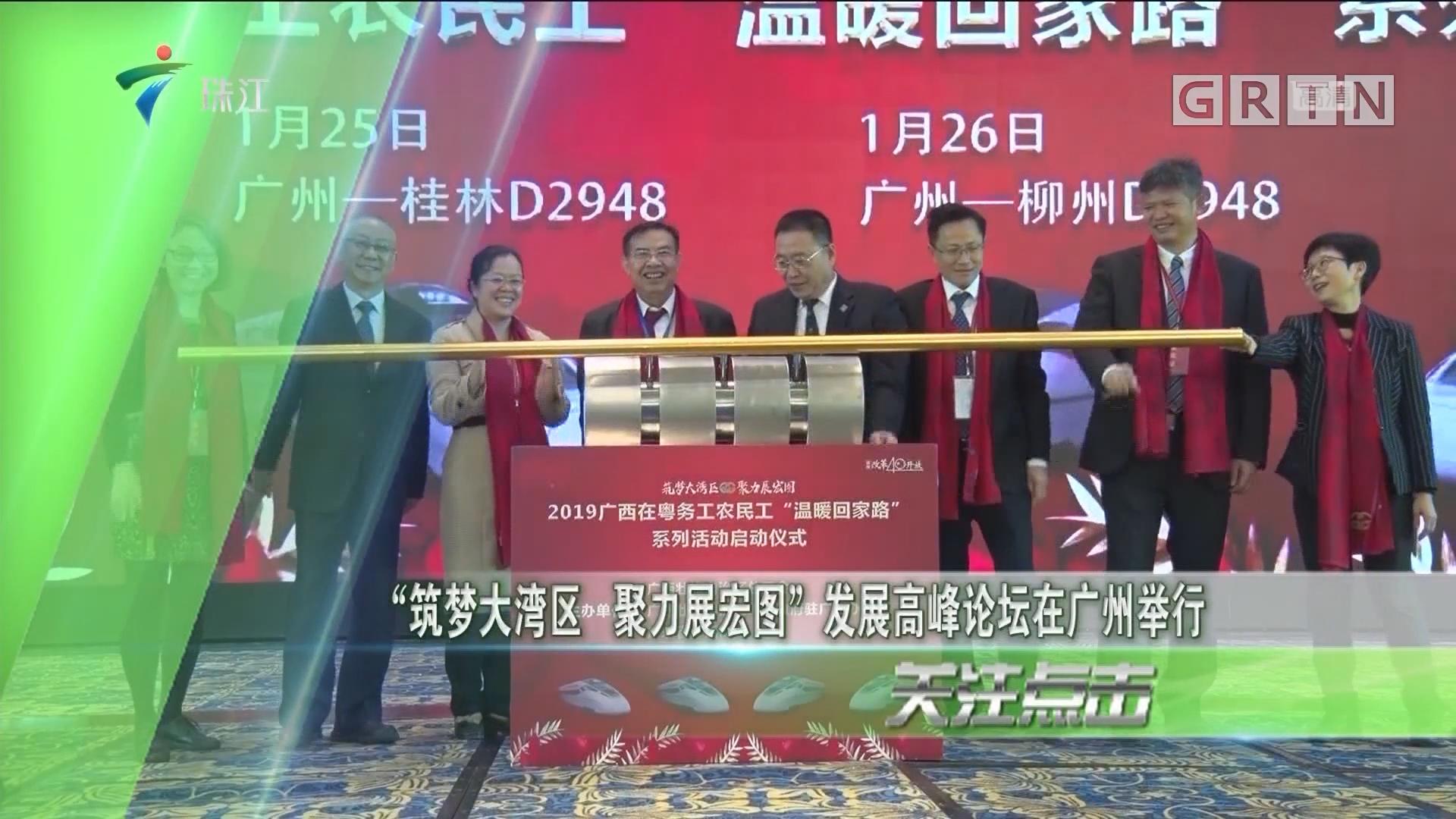 """""""筑梦大湾区 聚力展宏图""""发展高峰论坛在广州举行"""