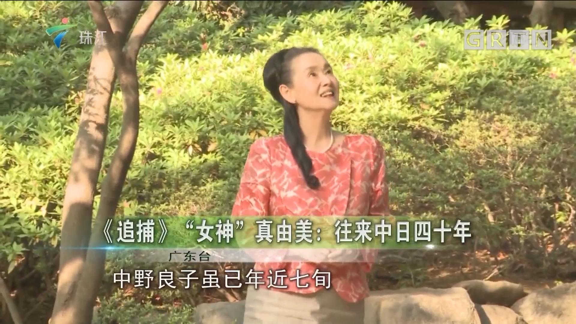 """《追捕》""""女神""""真由美:往来中日四十年"""
