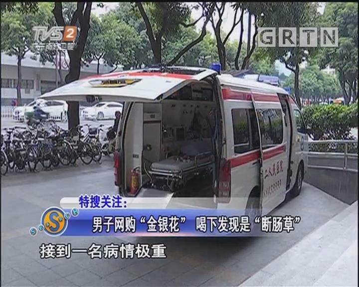 """男子網購""""金銀花"""" 喝下發現是""""斷腸草"""""""