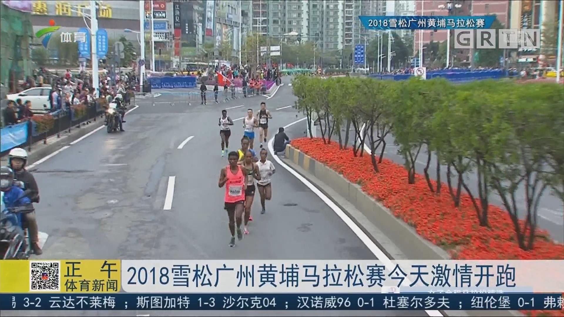 2018雪松广州黄埔马拉松赛今天激情开跑