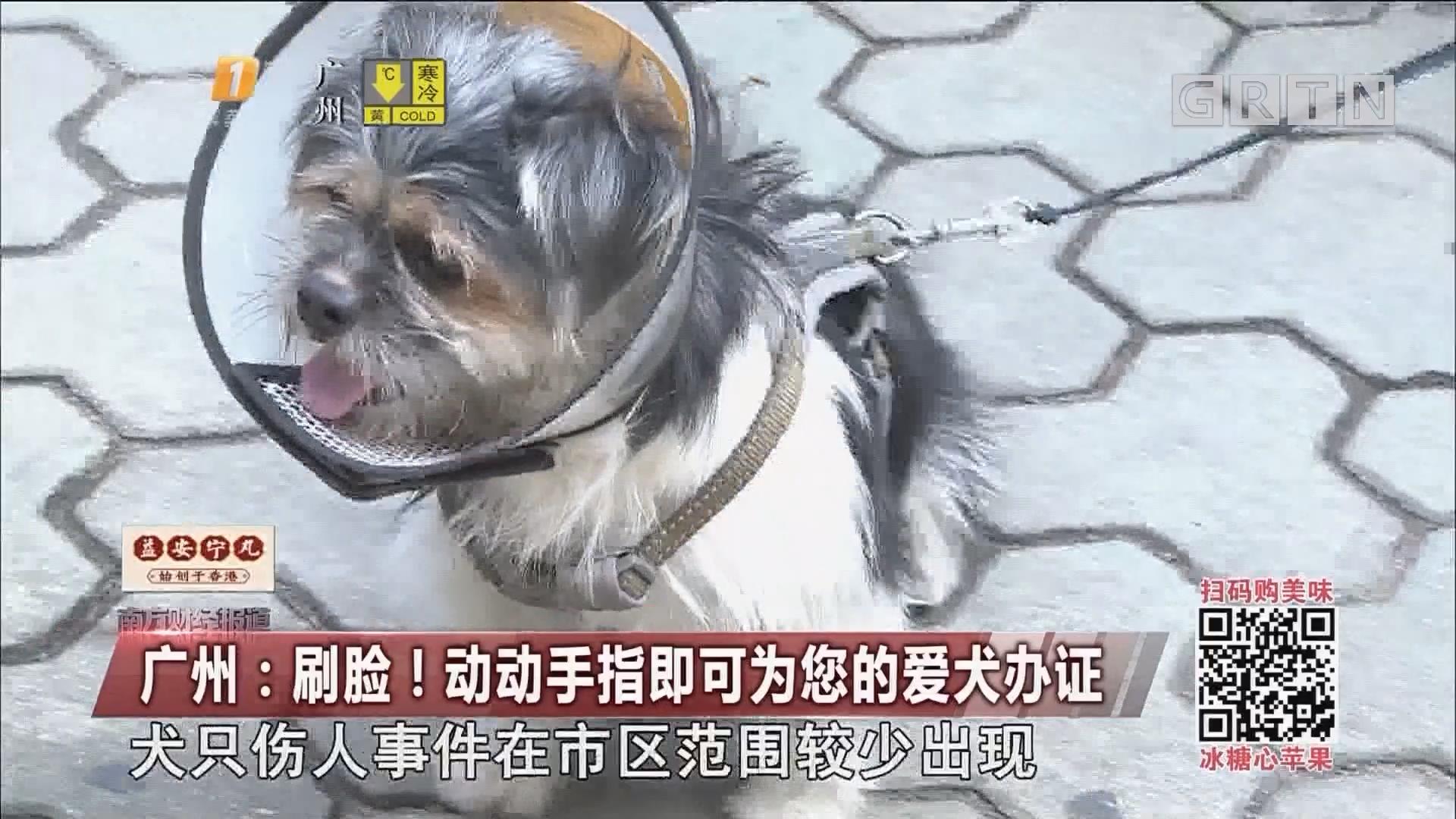 广州:刷脸!动动手指即可为您的爱犬办证