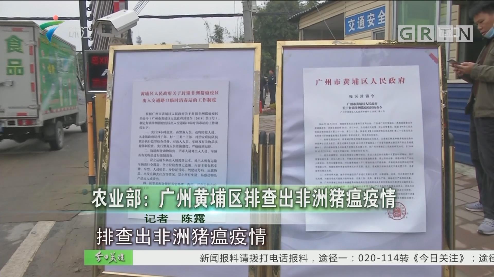 农业部:广州黄埔区排查出非洲猪瘟疫情