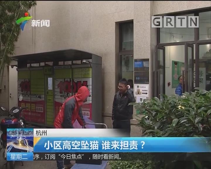 杭州:小区高空坠猫 谁来担责?