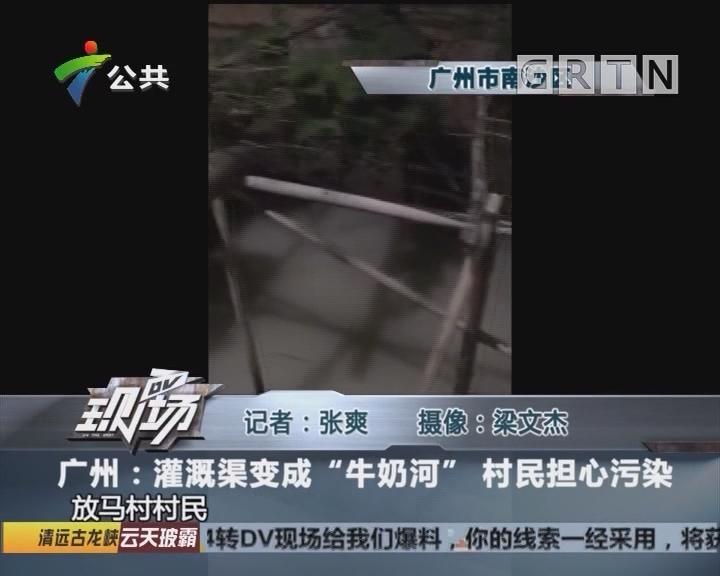 """广州:灌溉渠变成""""牛奶河"""" 村民担心污染"""