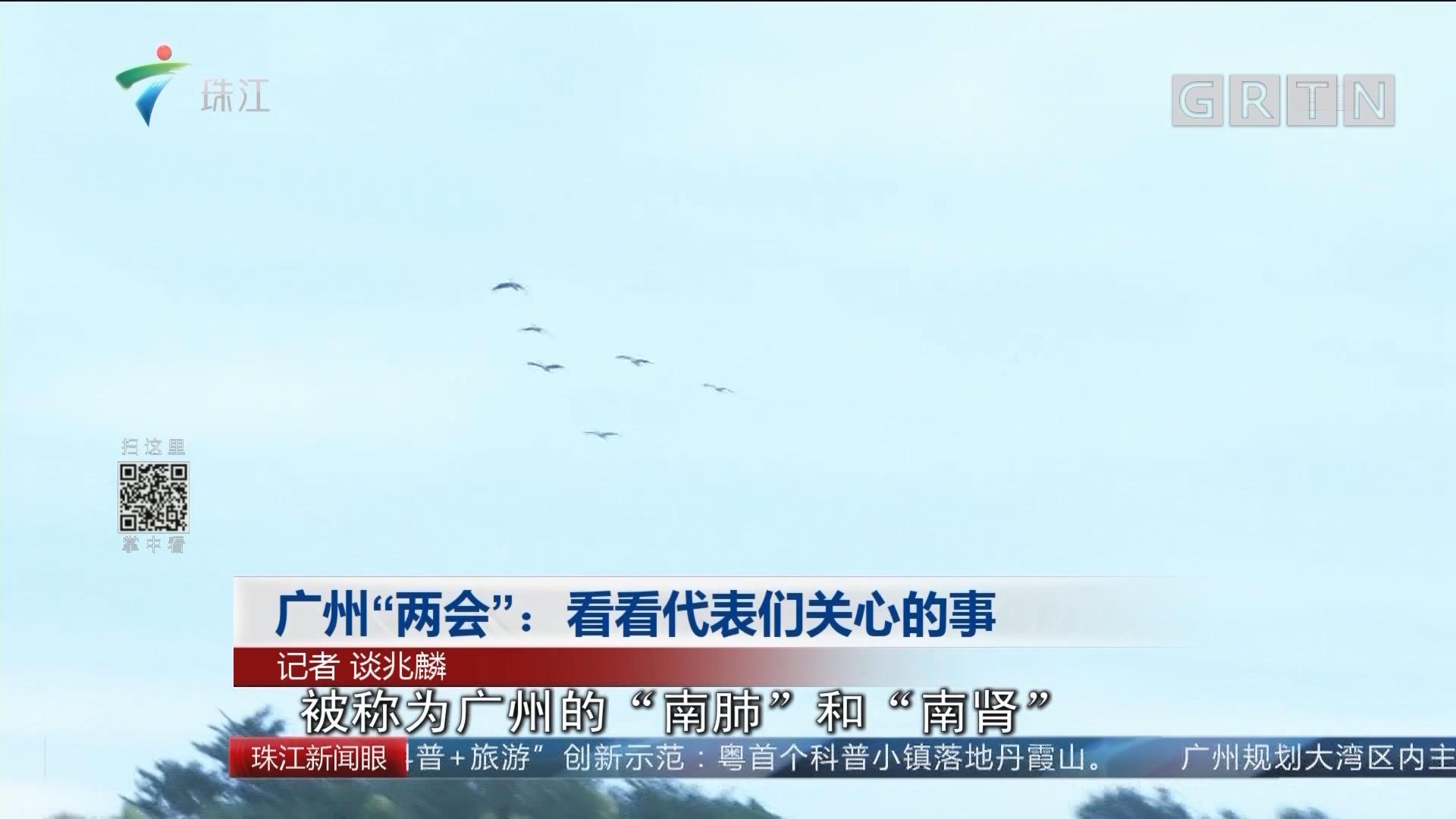 """广州""""两会"""":看看代表们关心的事"""