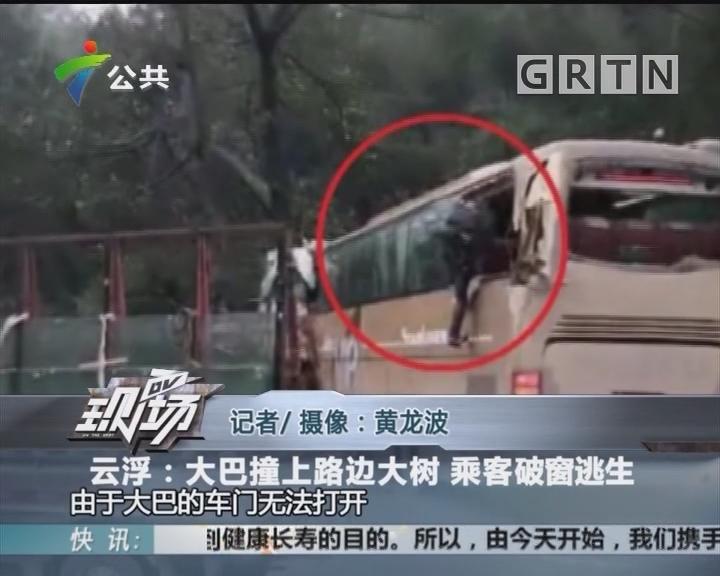 云浮:大巴撞上路边大树 乘客破窗逃生