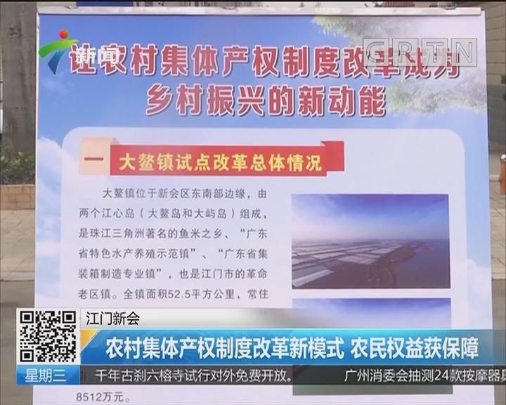 江门新会:农村集体产权制度改革新模式 农民权益获保障