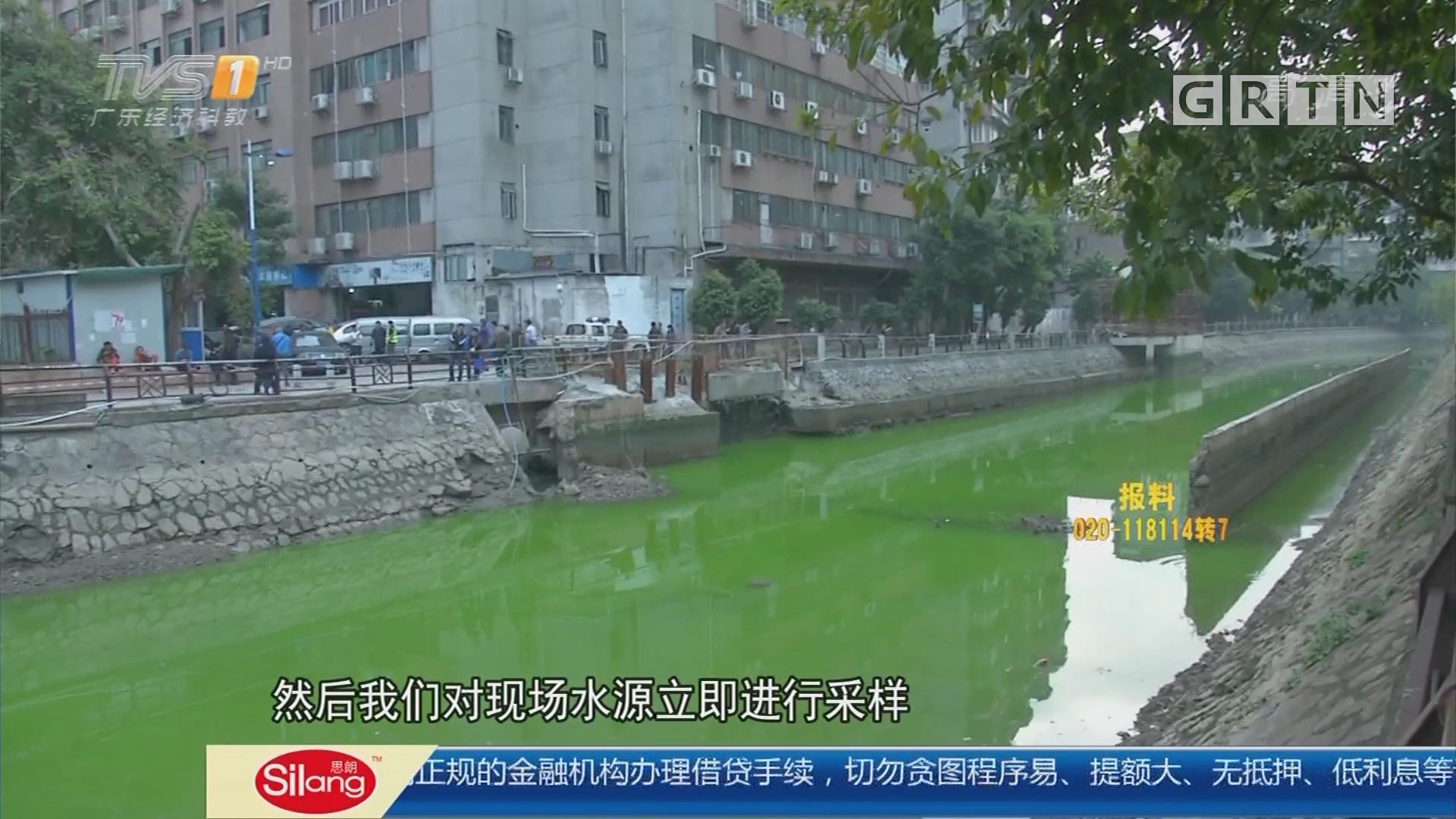 """广州市海珠区:河涌突然变成""""绿丝带"""" 长100余米"""