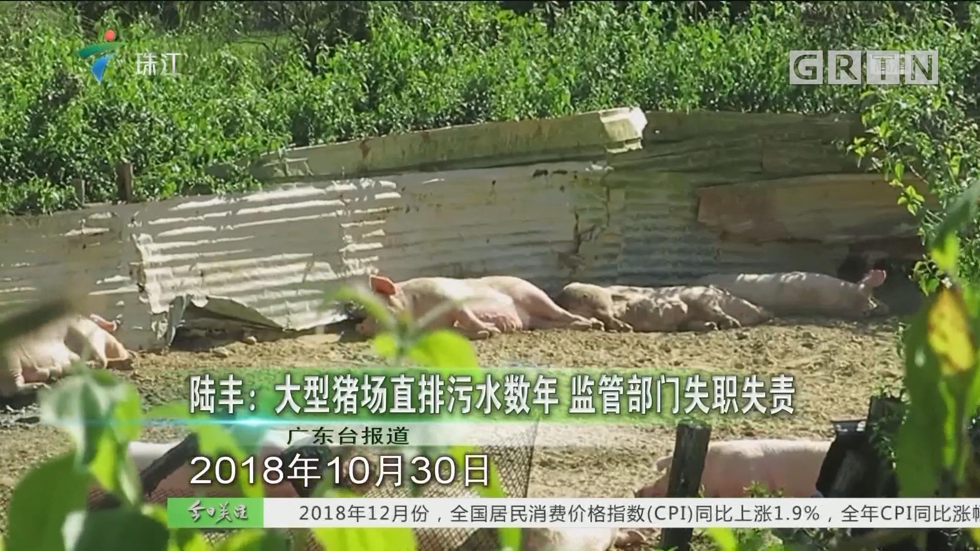 陆丰:大型猪场直排污水数年 监管部门失职失责