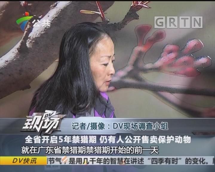 全省开启5年禁猎期 仍有人公开售卖保护动物