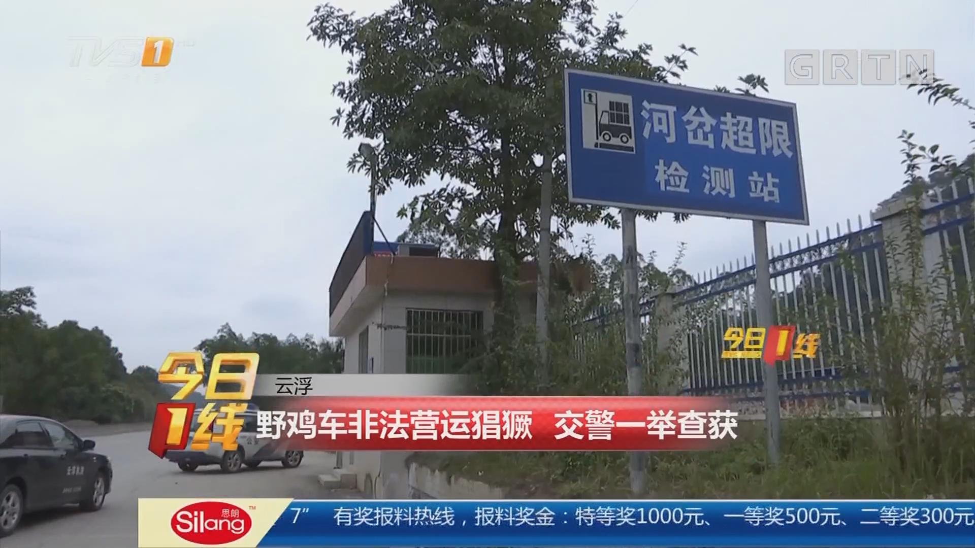 云浮:野鸡车非法营运猖獗 交警一举查获