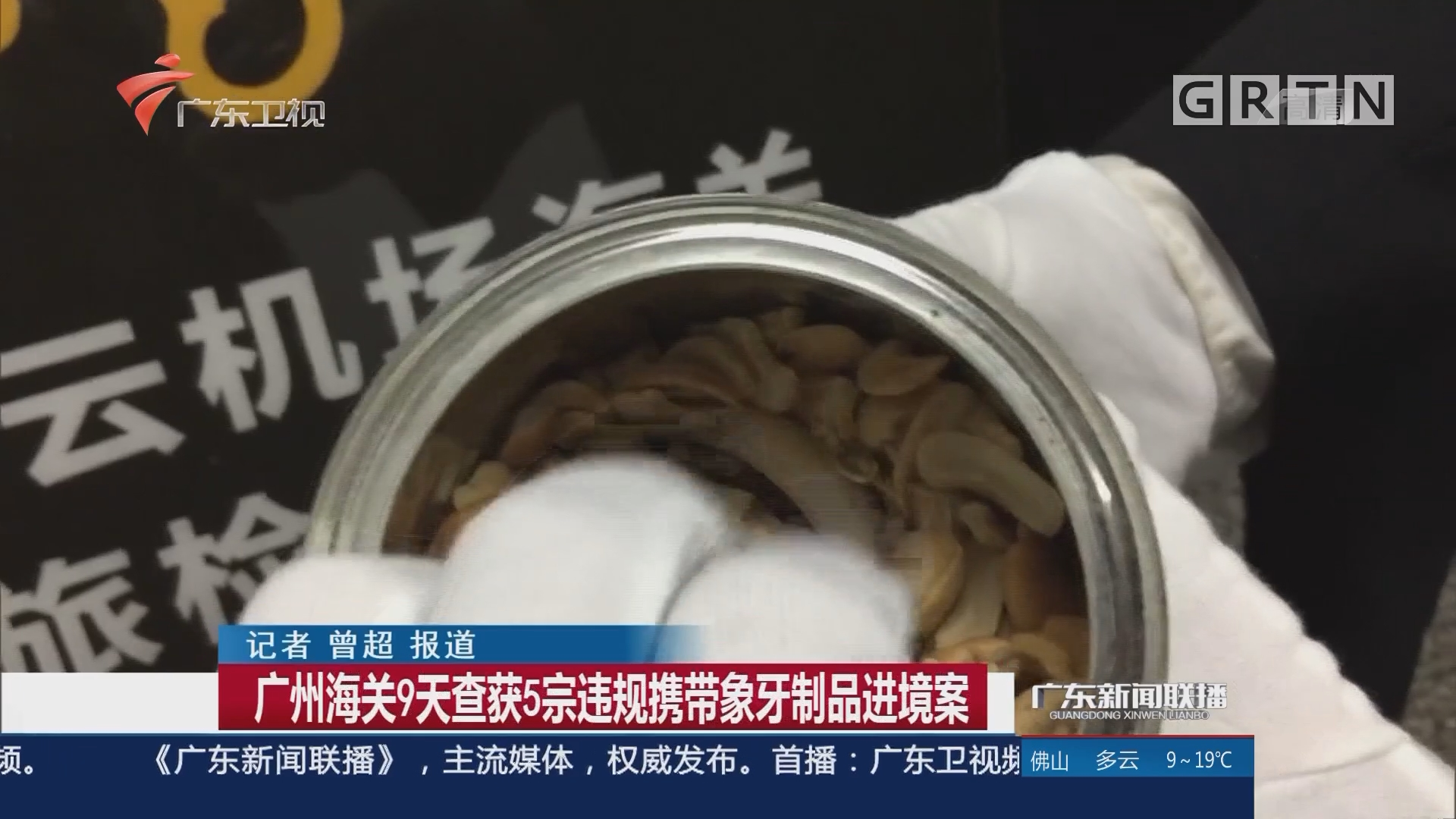 广州海关9天查获5宗违规携带象牙制品进境案
