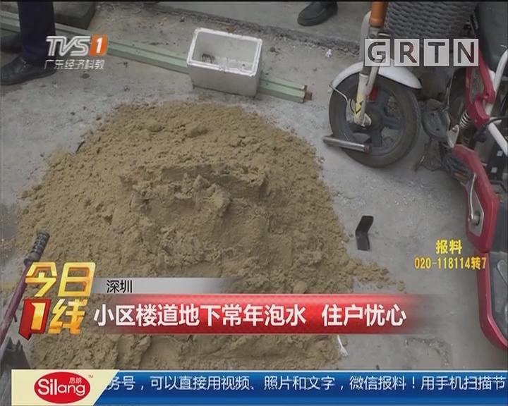 深圳:小区楼道地下常年泡水 住户忧心