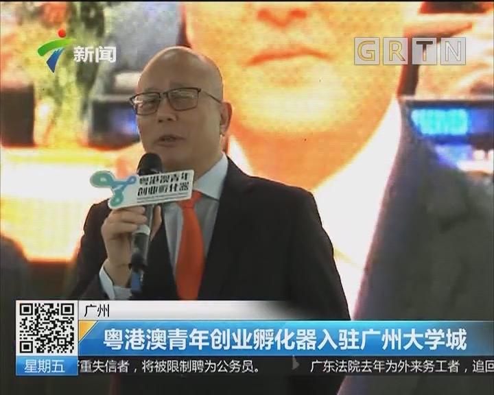 广州:粤港澳青年创业孵化器入驻广州大学城