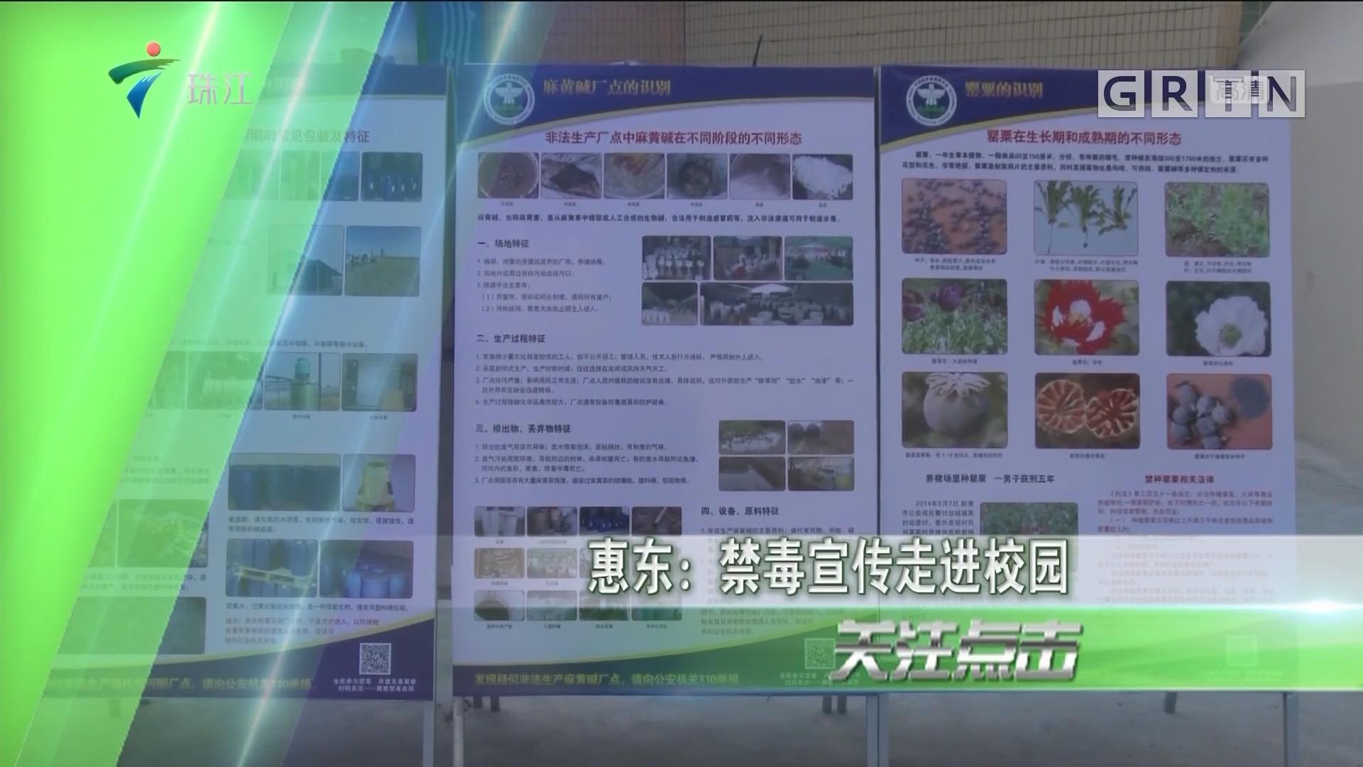 惠东:禁毒宣传走进校园