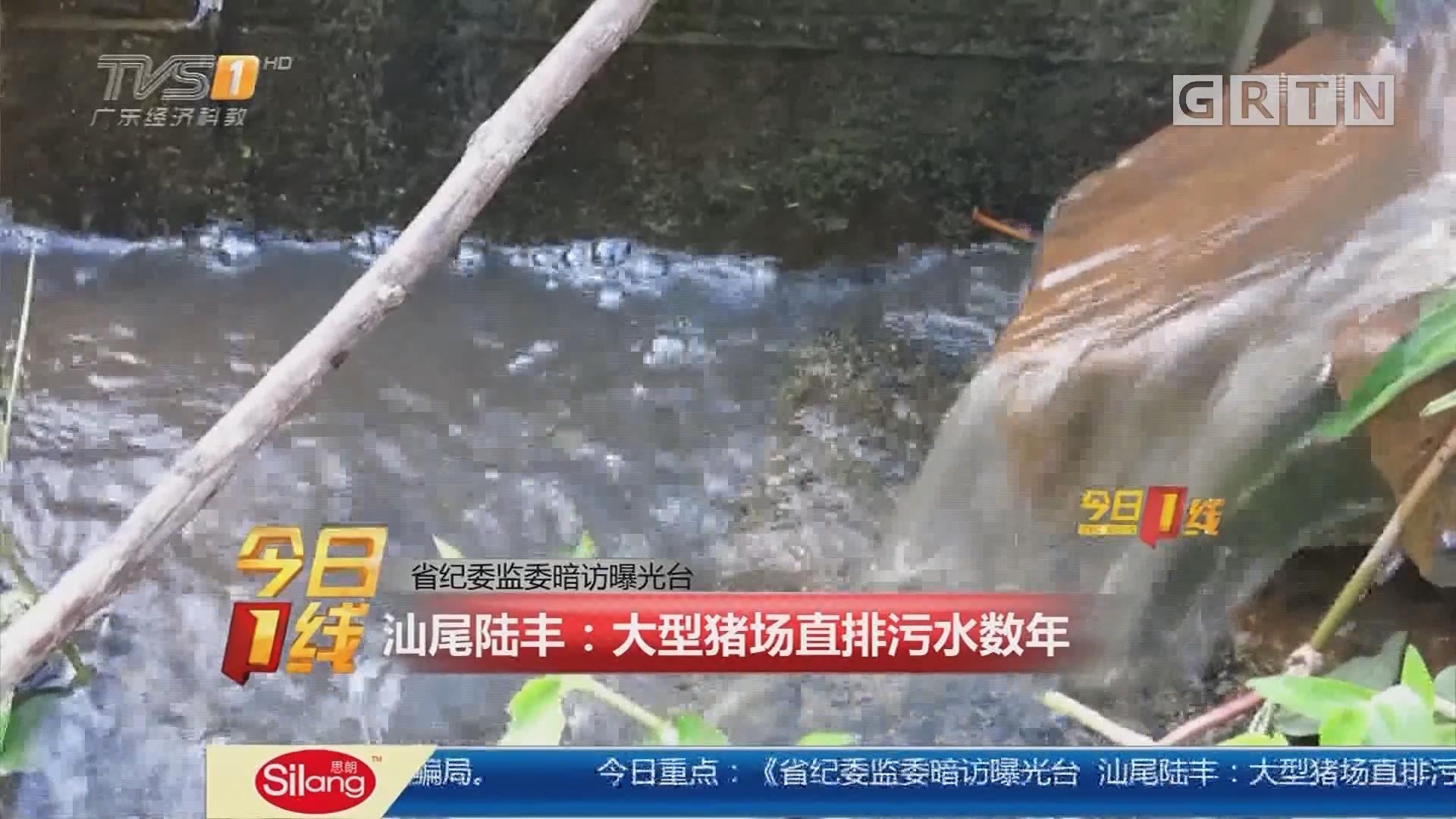 省纪委监委暗访曝光台 汕尾陆丰:大型猪场直排污水数年