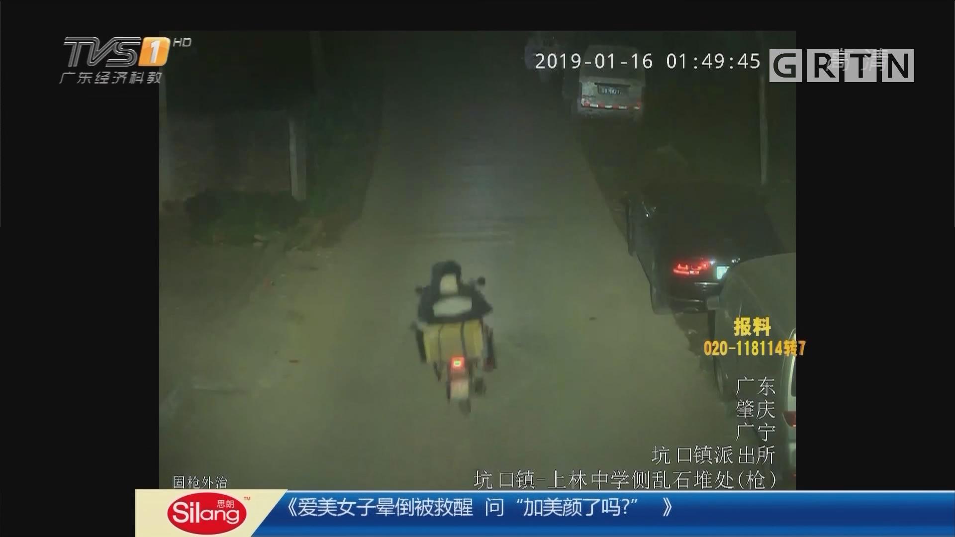 """肇庆:专偷""""过年肥鸡"""" """"黄鼠狼""""落网"""