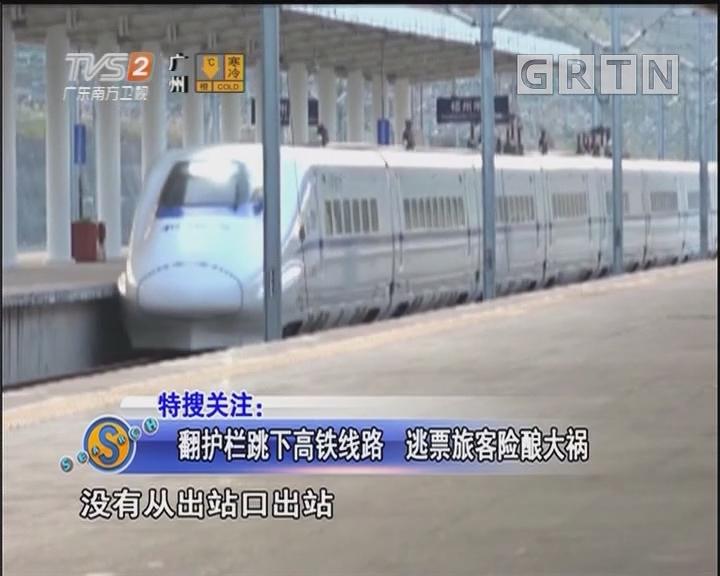 翻护栏跳下高铁线路 逃票旅客险酿大祸
