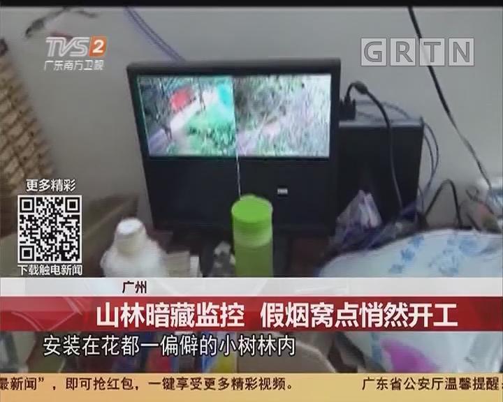 广州:山林暗藏监控 假烟窝点悄然开工