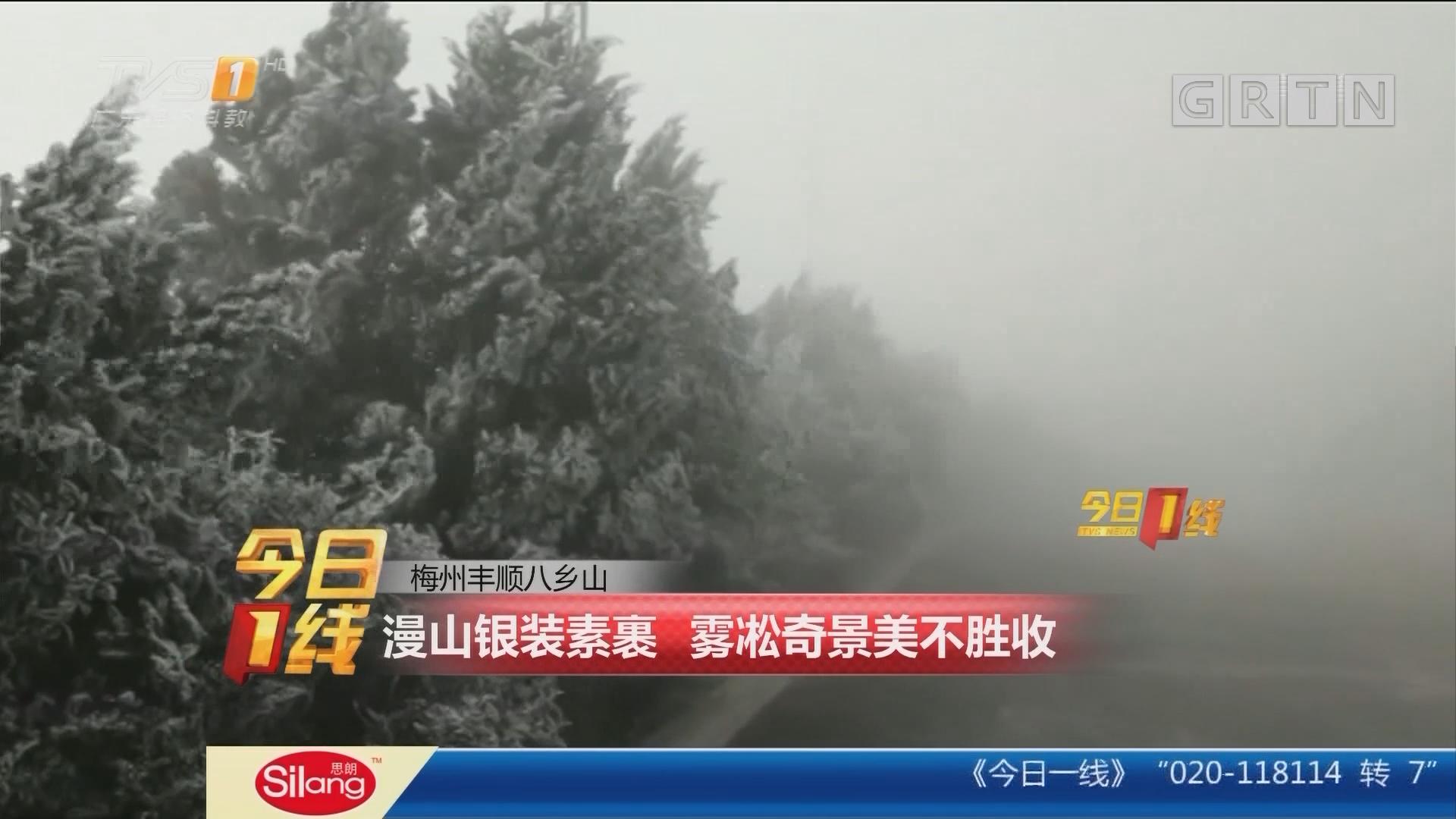 梅州丰顺八乡山:漫山银装素裹 雾凇奇景美不胜收