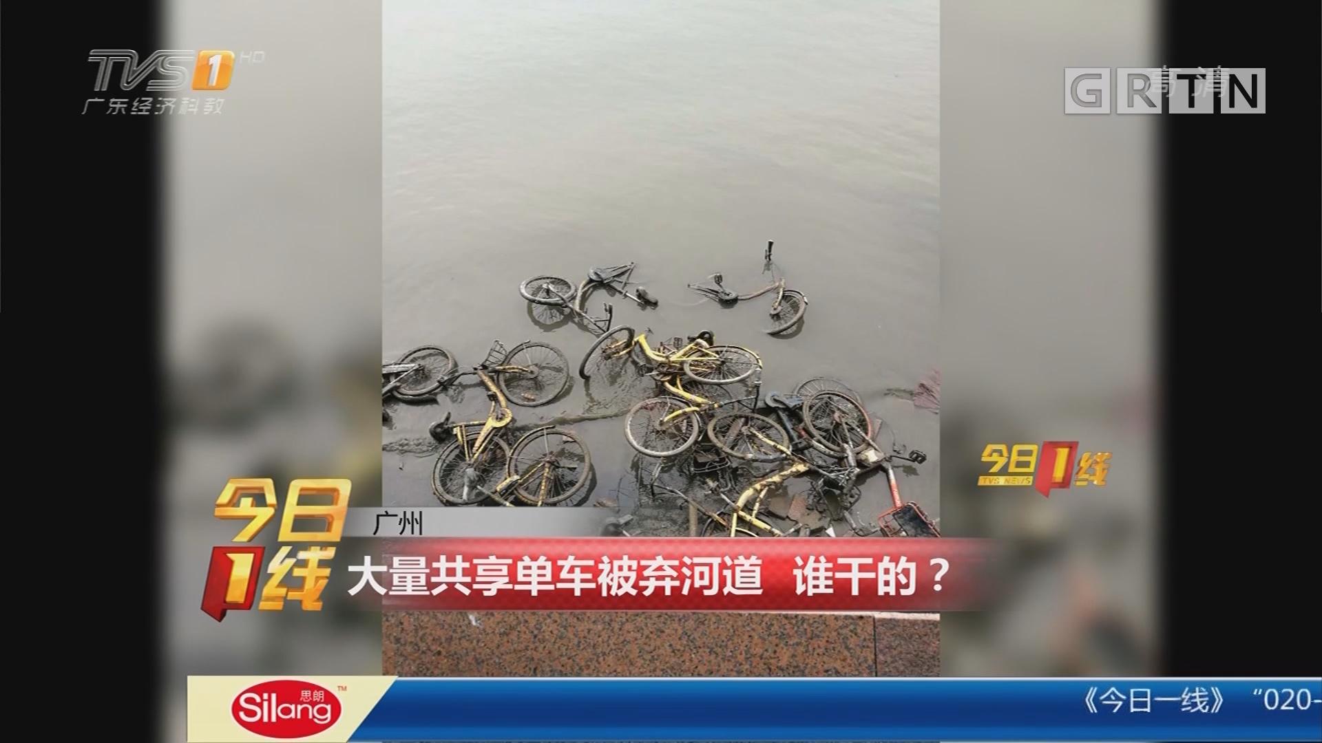广州:大量共享单车被弃河道 谁干的?
