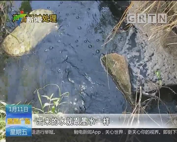 汕尾陆丰:大型猪场直排污水数年 执法监管部门失职失责