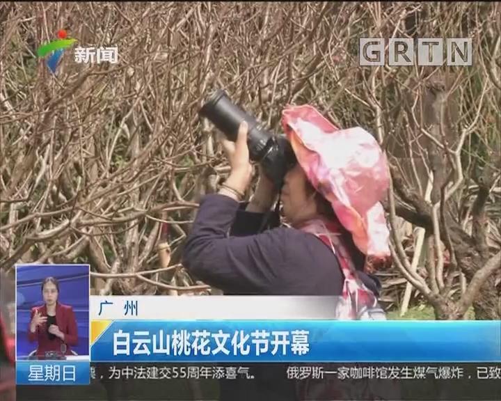广州:白云山桃花文化节开幕