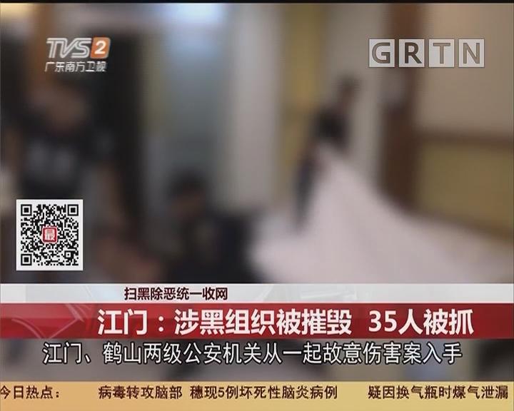 扫黑除恶统一收网 江门:涉黑组织被摧毁 35人被抓