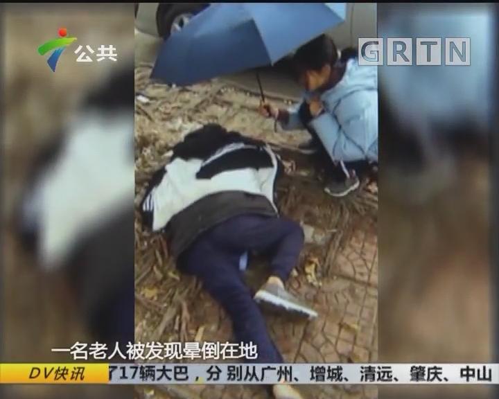 老人昏倒在地 两学生温暖护救
