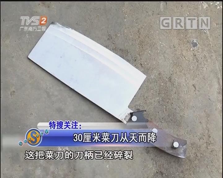 30厘米菜刀从天而降