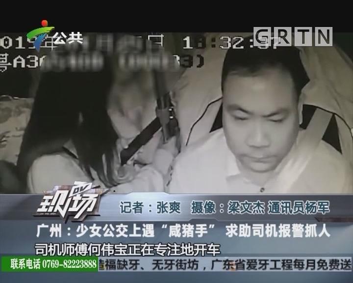 """广州:少女公交上遇""""咸猪手"""" 求助司机报警抓人"""