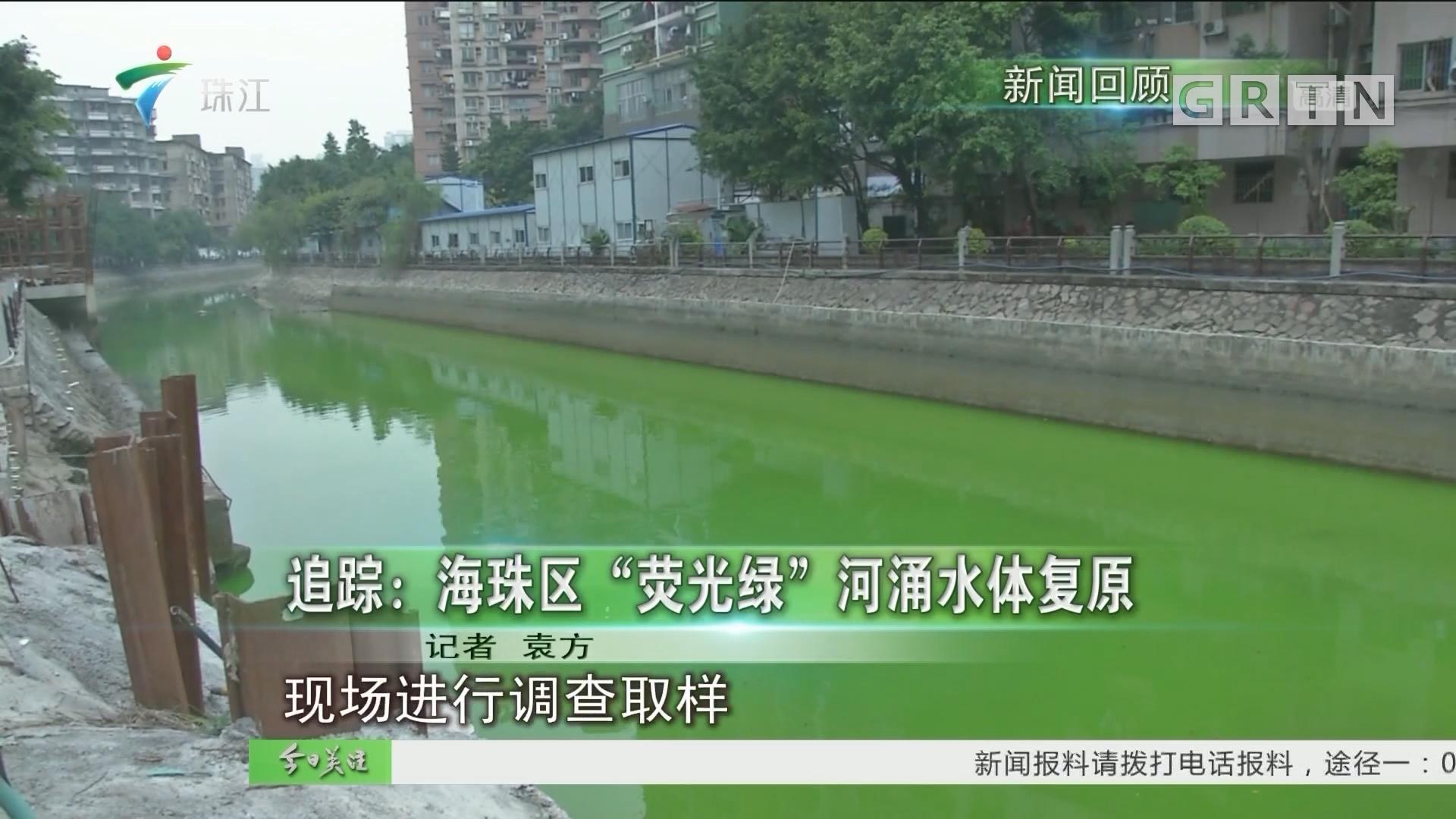 """追踪:海珠区""""荧光绿""""河涌水体复原"""