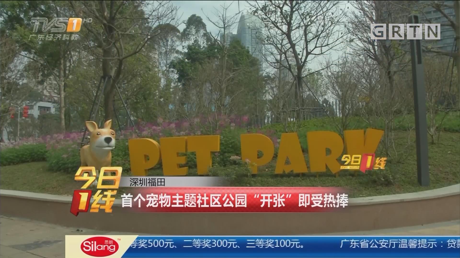 """深圳福田:首个宠物主题社区公园""""开张""""即受热捧"""