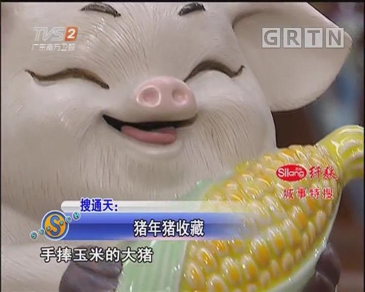 猪年猪收藏